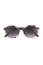 Square Sunglasses Brown